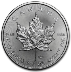 Maple leaf 5 dollars canada 2019 1 oz argent pur